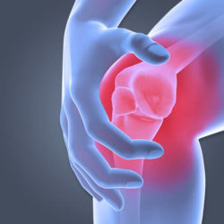 Column#14 膝の痛みの意外な原因
